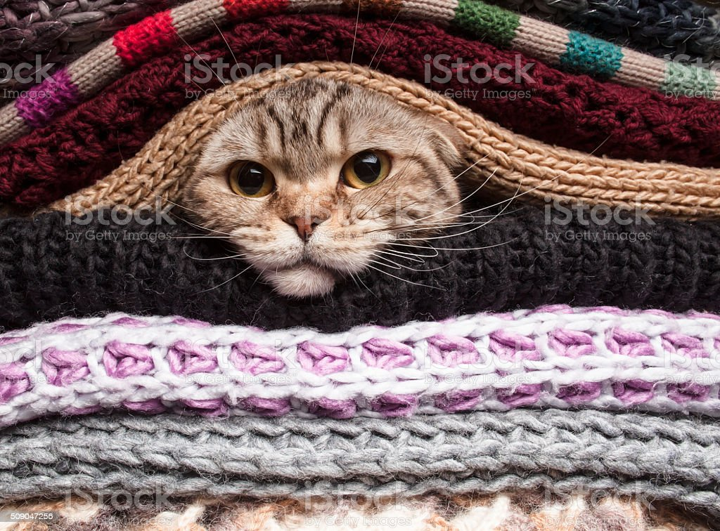 Pile of woolen clothes stock photo