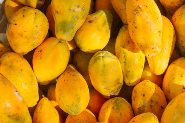 Pile of yellow papayas stacked in a fruit shop stock photo
