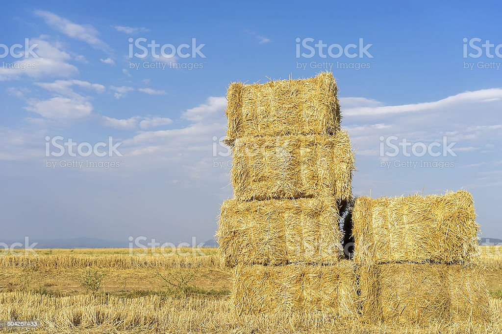 Piled hay bales stock photo