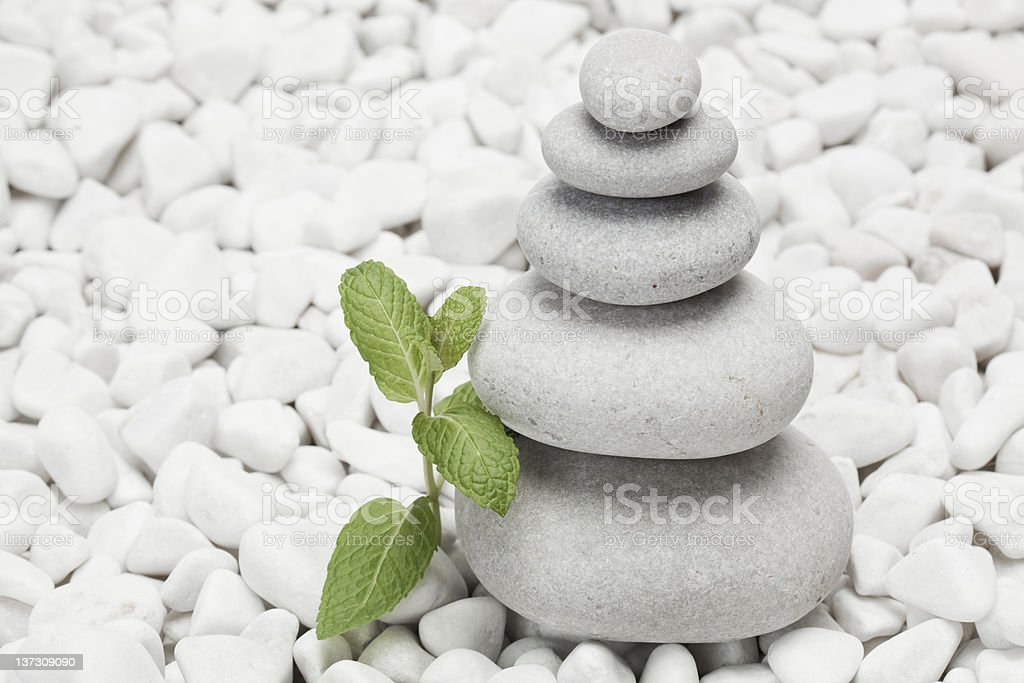 Piled pebble stones with mint twig royalty-free stock photo