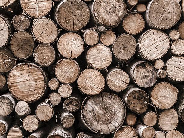 piled wood logs - holzstamm stock-fotos und bilder