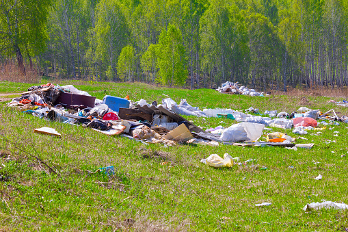 Piles of garbage on a background of green forest
