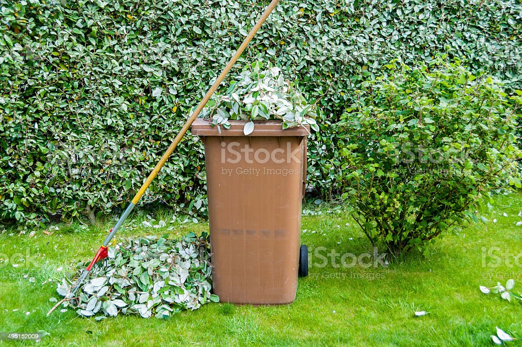 Piles of Leaves stock photo