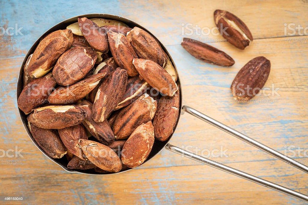 pili nuts in metal scoop stock photo