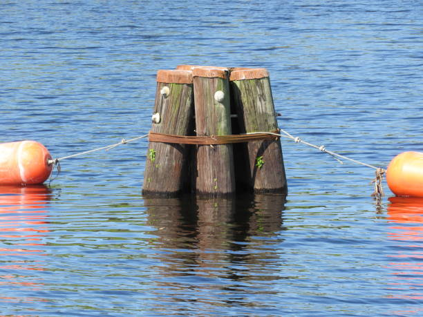 Pilings in canal stock photo