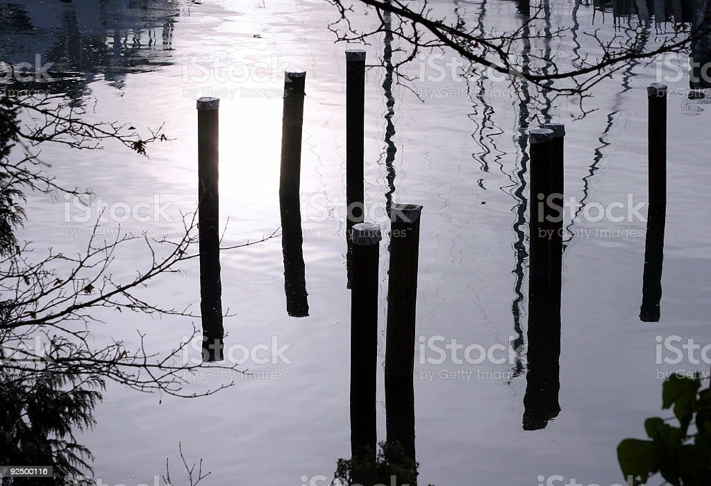 Pilings In Still Waters royalty-free stock photo