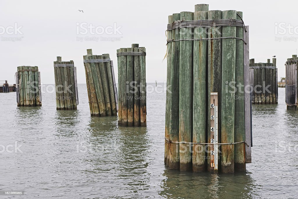 Pilings near a ferry dock royalty-free stock photo