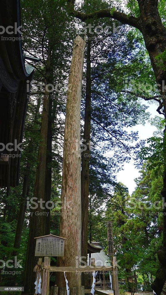 Pilar de Suwa-Santuario taisha - foto de stock