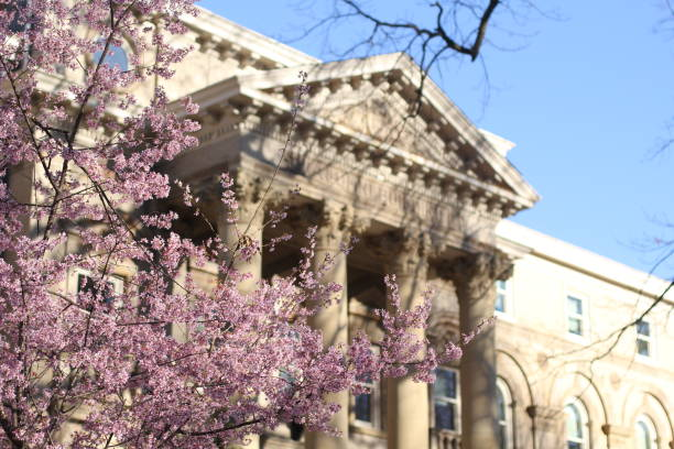 Pillared Building with Cherry Blossoms stock photo
