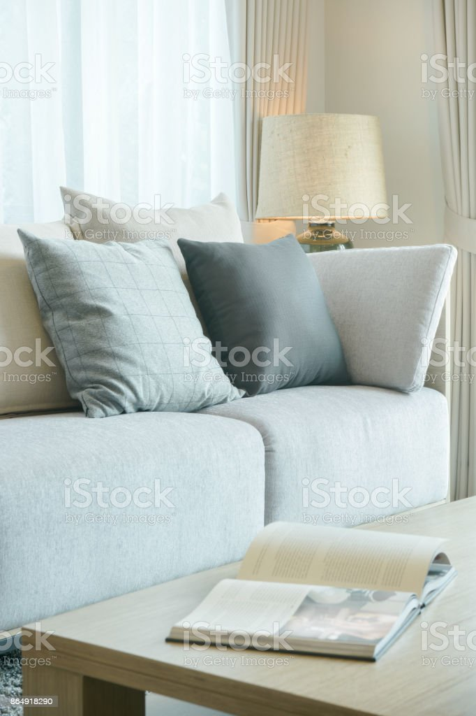 . Pillows On Sofa And Magazine On Center Table In Modern Living Room