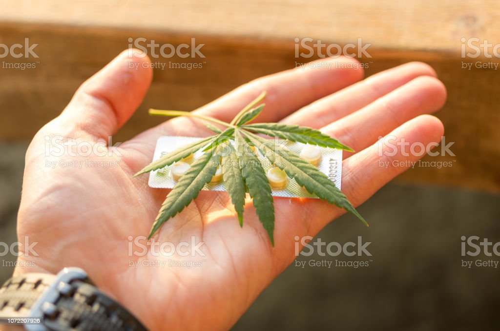Pills and hemp in the palm of your hand. The man holds the medicine....
