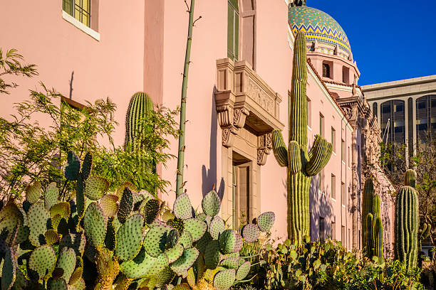 Pima County Courthouse Desert Cactus Landscaping in Tuscon Arizona Pima County Courthouse Desert Cactus Landscaping in Tuscon Arizona tucson stock pictures, royalty-free photos & images
