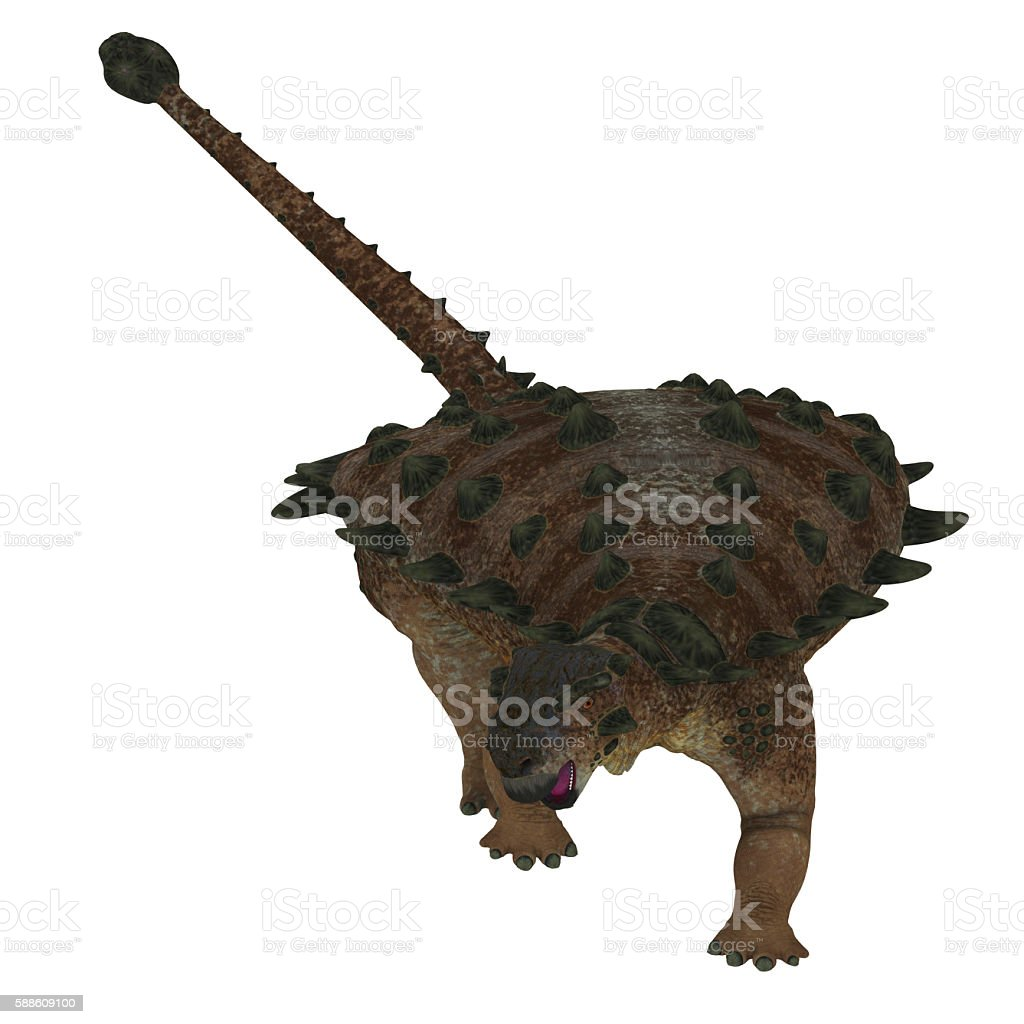 Pinacosaurus Dinosaur on White - foto de stock