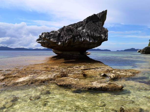 Pinagbuyutan Island rock, El Nido, Palawan Rock on the shallow transparent waters at the Idyllic Pinagbuyutan island, Bacuit archipelago, El Nido, Palawan. Philippines pinagbuyutan island stock pictures, royalty-free photos & images