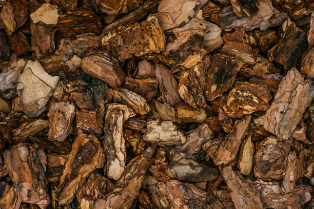 Tan Bark Garden Mulch Stock Photos Pictures Royalty Free Images