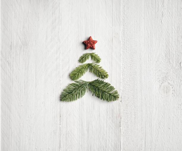 pine branche christmas tree - background nature wood white - christmas stock photos and pictures