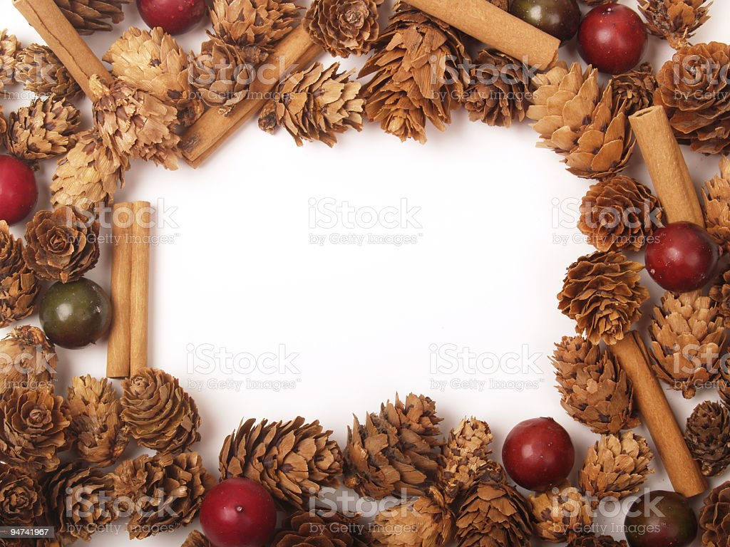 Pine Cone Frame royalty-free stock photo