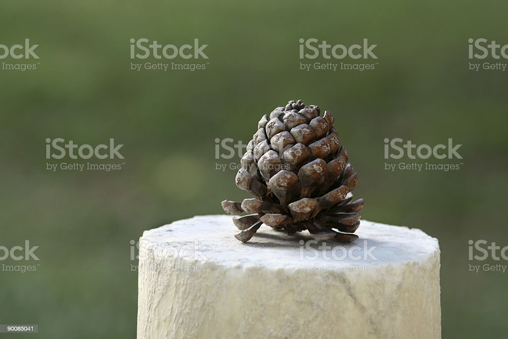 Pine cone on a broken marble column royalty-free stock photo