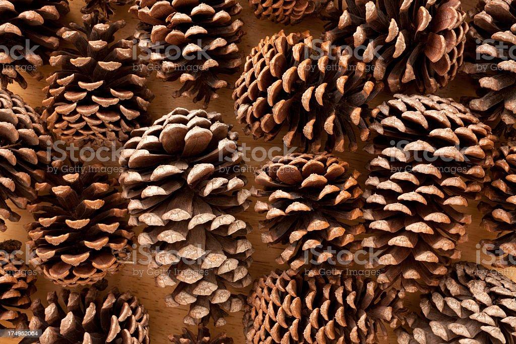 Pine cones background royalty-free stock photo