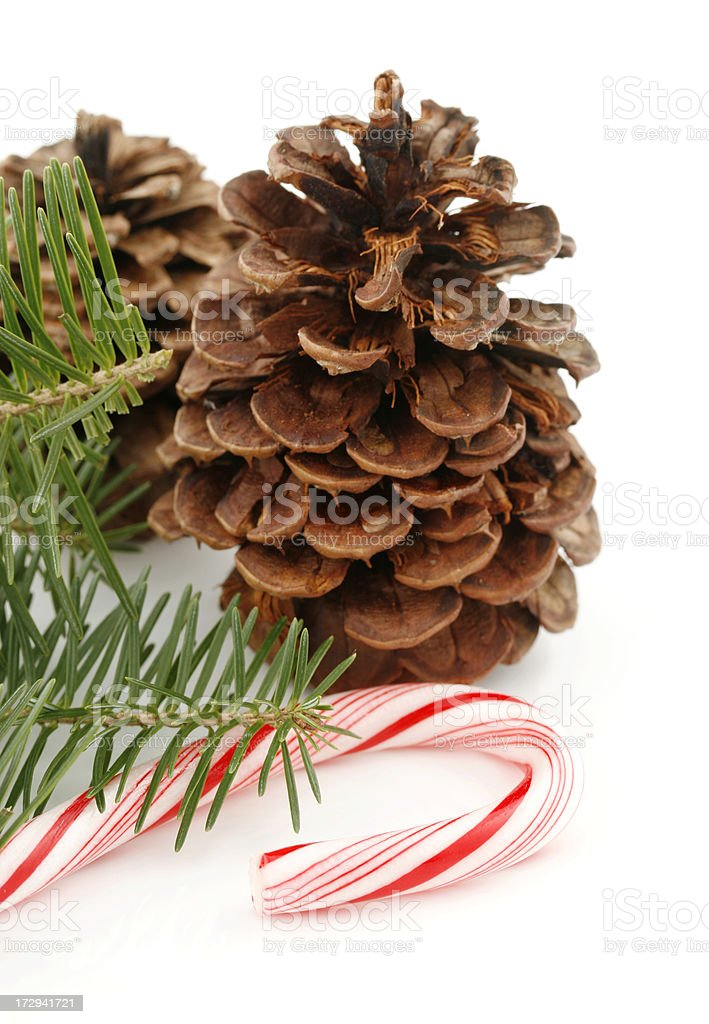 Pine Cones, Branch and Candy Cane royalty-free stock photo