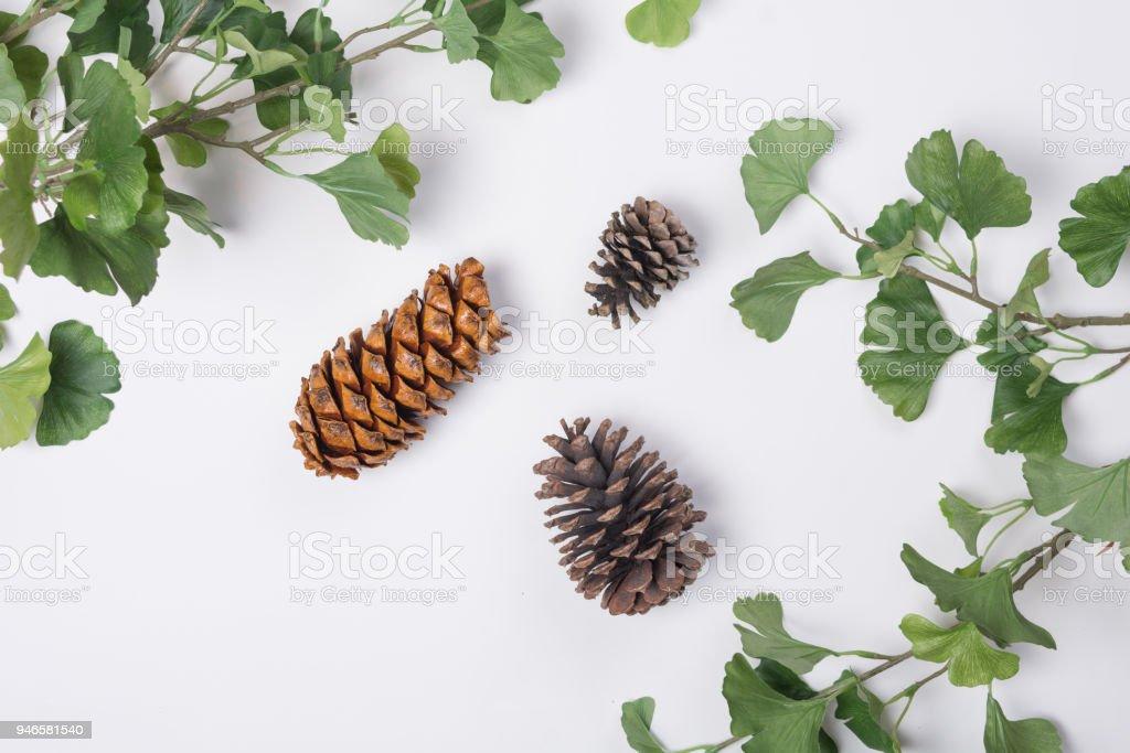 25 por caja Plata conos de pino