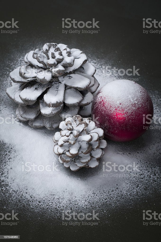Pine cones with snow royalty-free stock photo