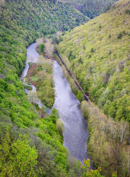 Pine Creek Stock Photos, Pictures & Royalty-Free Images ...