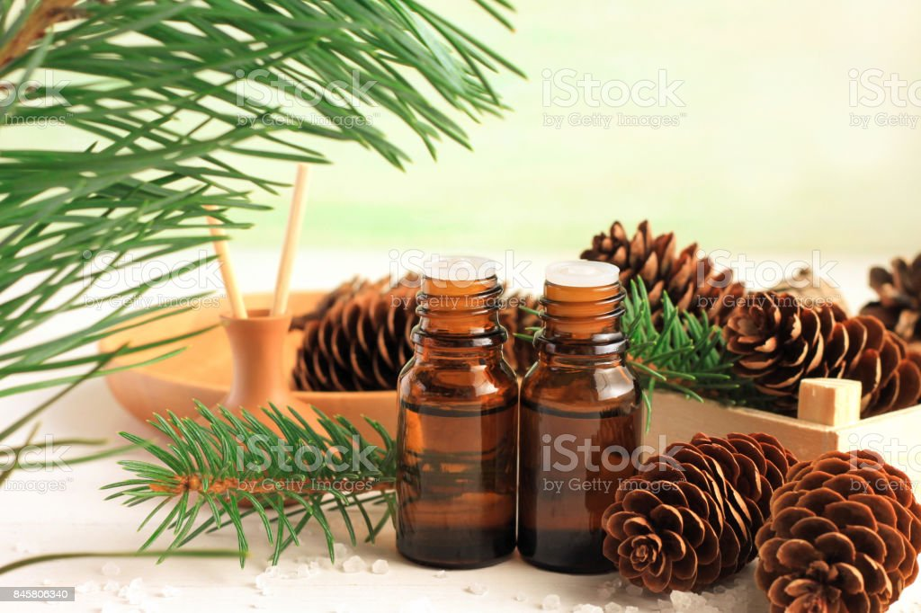 Pine essential oil bottles, green fir tree branch with long needles, spruce cones stock photo