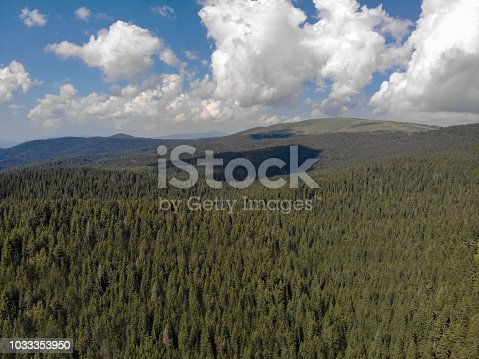 Gorgeous mountains and forests in summer.