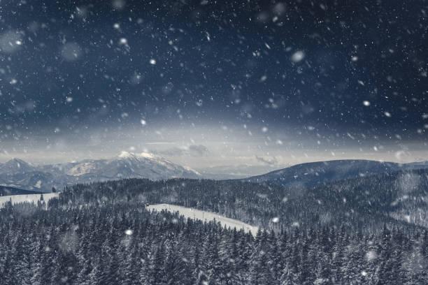 Pine forest covered with snow picture id1045458468?b=1&k=6&m=1045458468&s=612x612&w=0&h=zwlkcsp45kuuglzmwoxwsb6qmohaxbzantcdik3k6em=