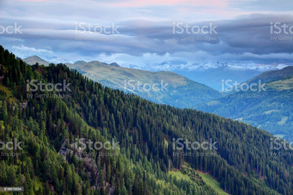 Pine forests in Carnic and Gailtal Alps with snowy Hohe Tauern stock photo