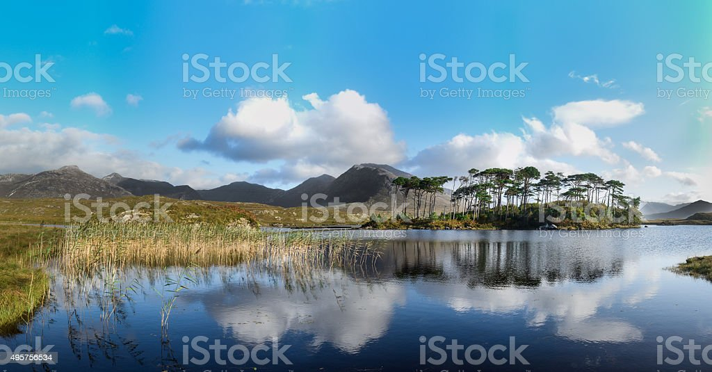 Pine Island, Connemara National Park, Ireland stock photo