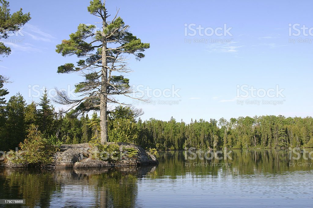 Pine island royalty-free stock photo