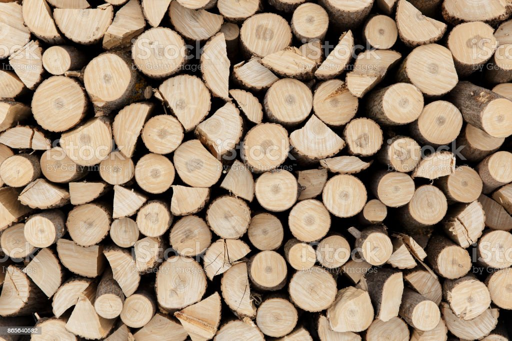 Pine logs in the forest, Firewood as a renewable energy source stock photo