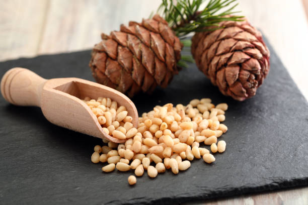 Pine nuts and pine cones stock photo