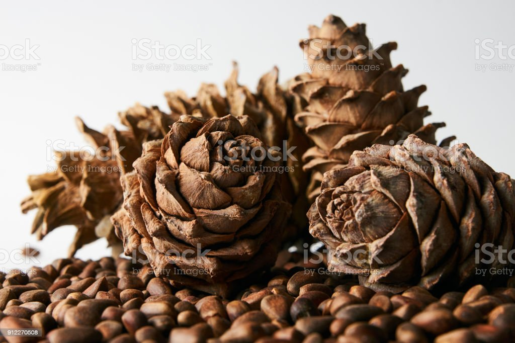 Cedar pine nuts and ripe pine cones isolated on a white background,...