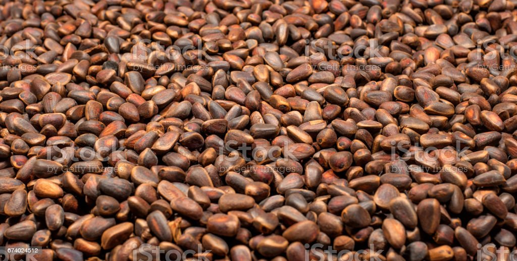 Pine nuts in the form of a background. royalty-free stock photo