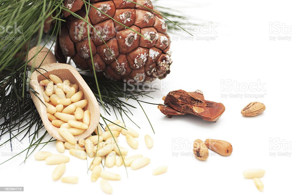Pine Nuts. stock photo