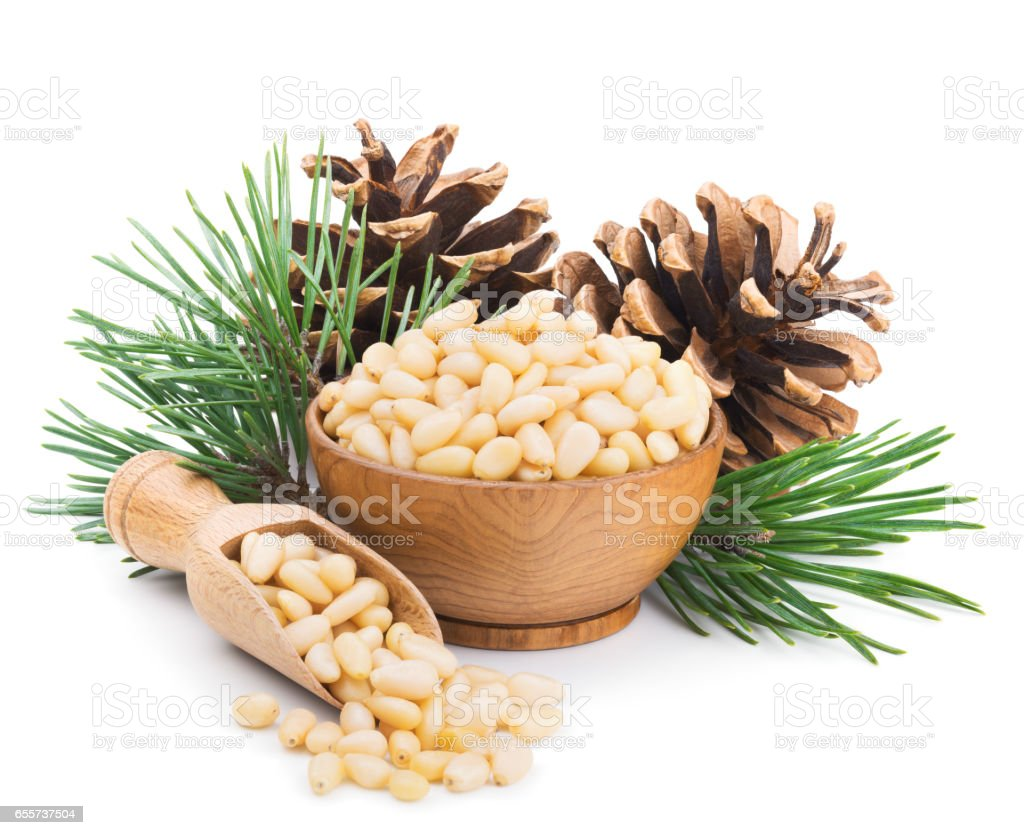 Pine nuts with branches and cones isolated on white stock photo