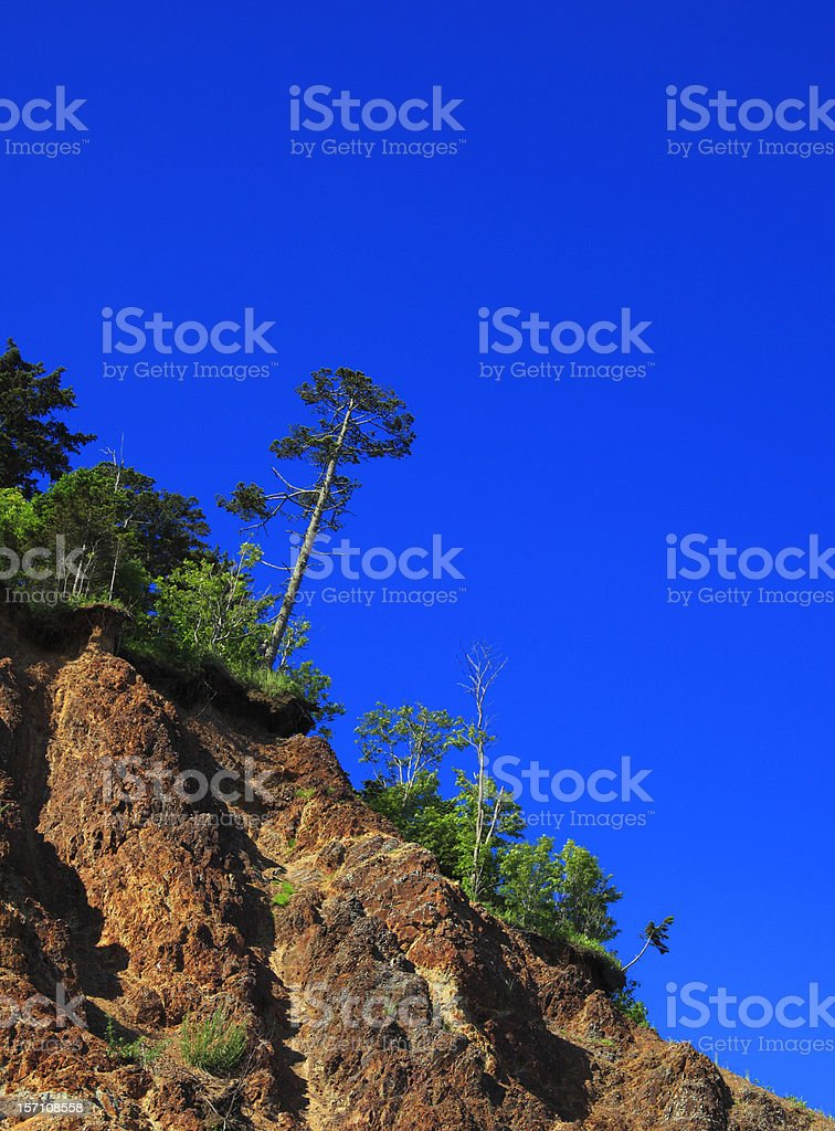 Pine on the rock against bright blue sky royalty-free stock photo