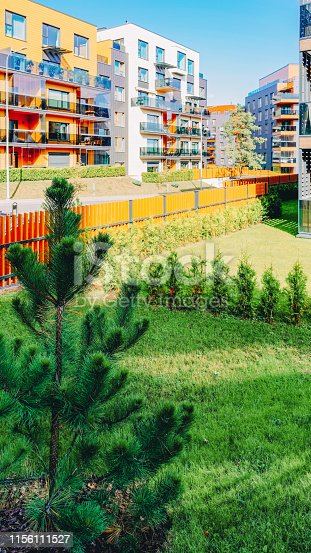 949087660 istock photo Pine tree at architectural apartment residential buildings 1156111527