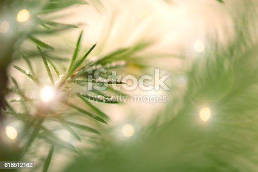 875265254 istock photo Pine Tree Background For Christmas Decoration 618512162