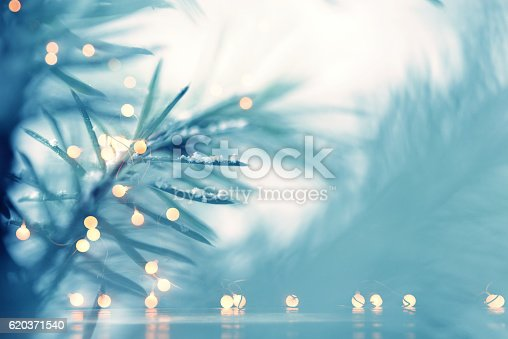 875265254 istock photo Pine Tree Background For Christmas Decoration 620371540