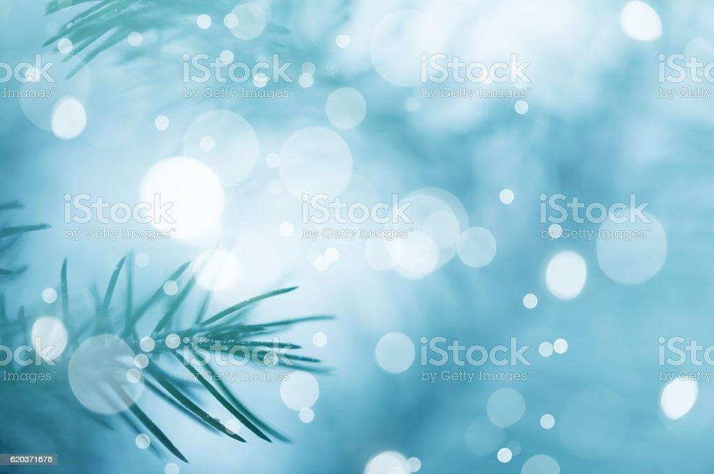 Sosna tło na Boże Narodzenie Dekoracja zbiór zdjęć royalty-free