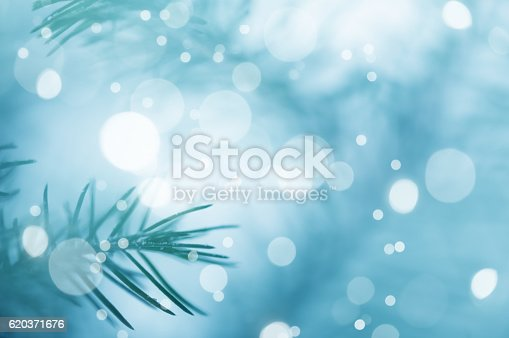 875265254 istock photo Pine Tree Background For Christmas Decoration 620371676