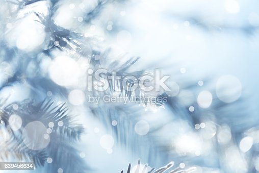 875265254 istock photo Pine Tree Background For Christmas Decoration 639456634
