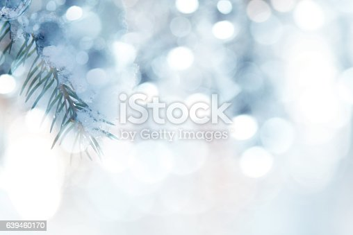 875265254 istock photo Pine Tree Background For Christmas Decoration 639460170