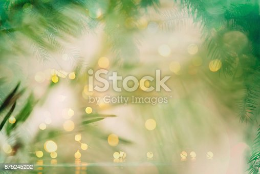 875265254 istock photo Pine tree background for Christmas Decoration 875245202