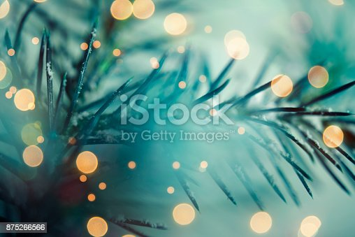 875265254 istock photo Pine tree background for Christmas Decoration 875266566