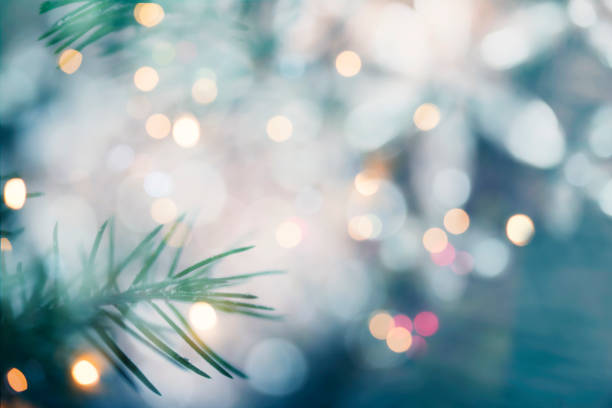 Pine tree background for Christmas Decoration with defocused lights stock photo
